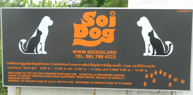 Soi Dog Foundation - Sponsor A Dog Today!