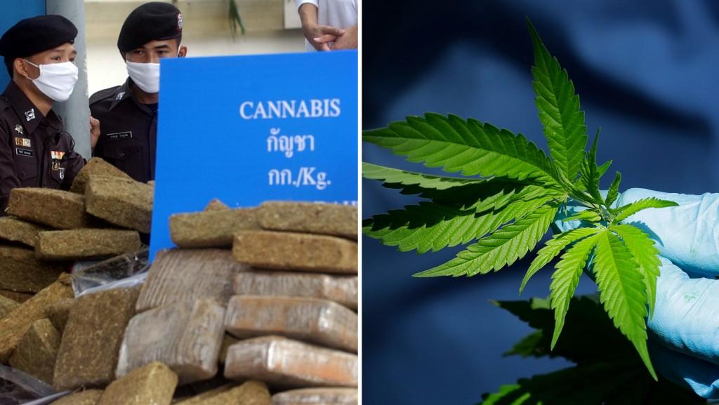 Medical marijuana is now legal in Thailand